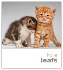 07504.022 folle leafs