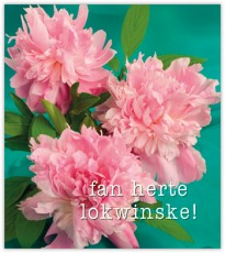 07507.024 fan herte lokwinske