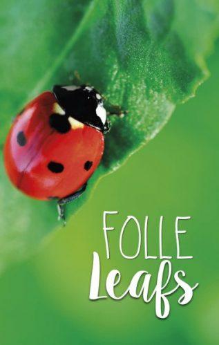 lokwinske-nl-4seasons-fries-857-folle-leafs