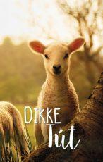 lokwinske-nl-4seasons-fries-862-dikke-tut