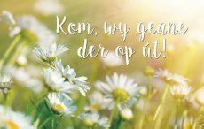 lokwinske-nl-4seasons-fries-873-kom-wy-geane-der-op-ut