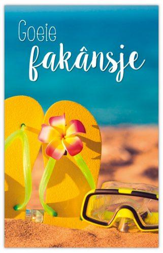 lokwinske-nl-4seasons-fries-879-goeie-fakansje