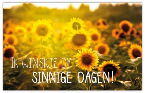 lokwinske-nl-4seasons-fries-905-ik-winske-dy-sinnige-dagen