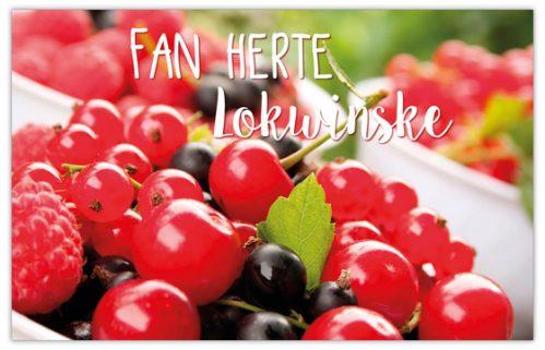 lokwinske-nl-4seasons-fries-915-fan-herte-lokwinske