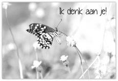 lokwinske-nl-wenskaarten-zwart-wit-008-ik-denk-aan-je